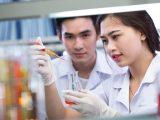 Vai trò của ngành Dược Việt Nam hiện nay